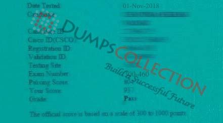 300-460 dumps